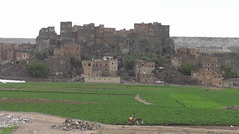 جمال اليمن